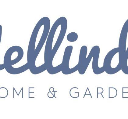 Wellindal cierra una ronda de financiación de más de 2 millones de euros