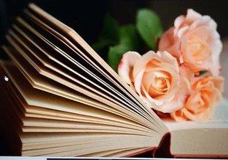 Comunicación en medios para una fiesta del libro y la rosa más veraniega