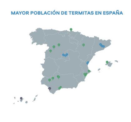 Madrid, Barcelona, Valencia y Sevilla, las ciudades españolas más afectadas por las plagas de termitas