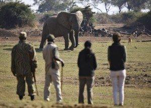 Viajes Amigo_África