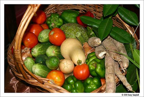 Alimentos alcalinos, positividad mental y ejercicio físico, el mejor remedio contra el cáncer
