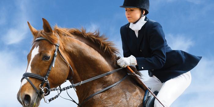 La UE inicia un proyecto de alta tecnología a favor de la seguridad universal de la equitación