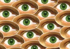 eyes-490608_640.jpg