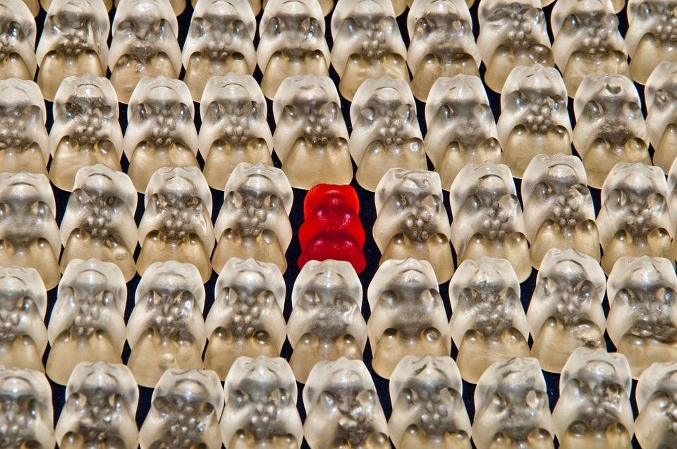 La comunicación de nichos: una estrategia vital para la eficacia de un blog