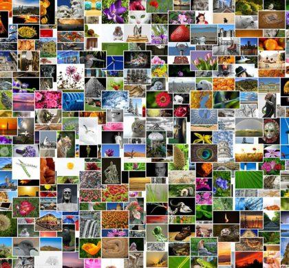 El futuro de los textos en redes sociales, el poder de la imagen