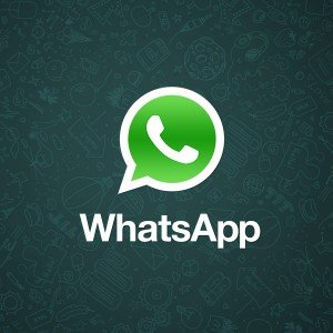 media whatsapp logo with background