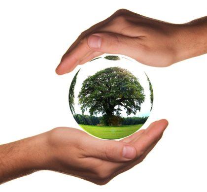 Empresa con propósito: cómo dar visibilidad a las causas socioambientales con las que las compañías están comprometidas