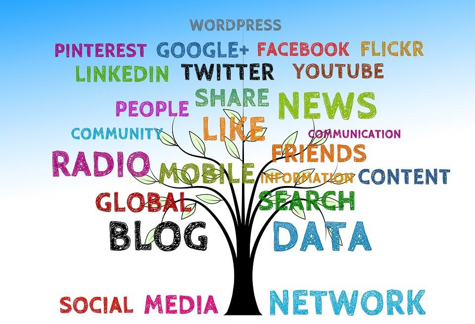 ¿Por qué es importante diseñar un plan de social media? (I)